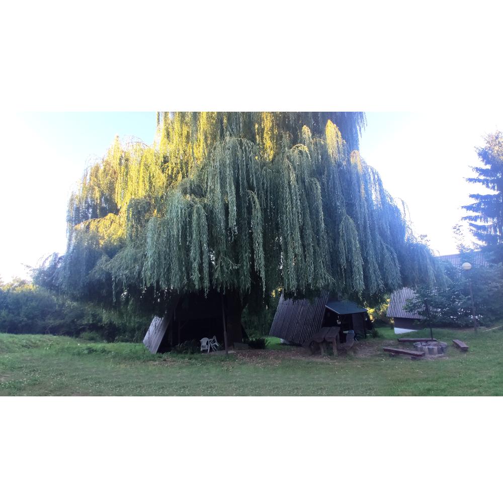Bográcsolás / sütögetési lehetőség kertünkben